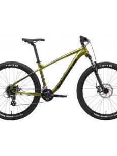 Dámske bicykle s pevným rámom